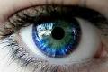 Ганглиозные клетки сетчатки живут при глаукоме дольше, чем предполагалось
